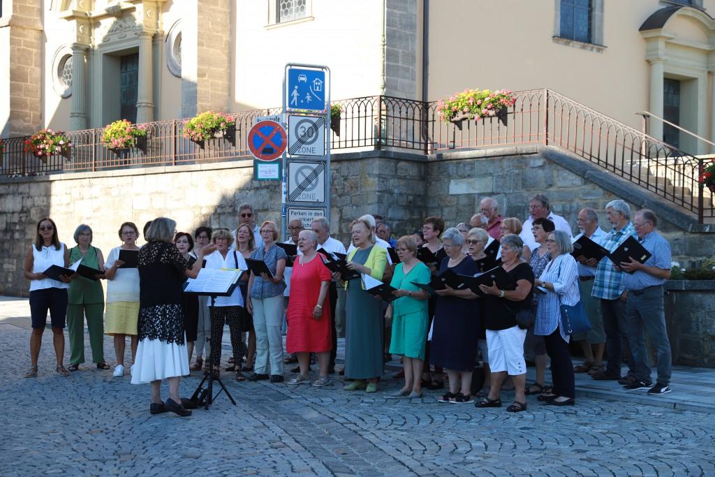 Der Gemischte Chor des Sängervereins bei der Nacht der Chöre im Juni 2019. (Foto: Carolin Fritz-Reich)
